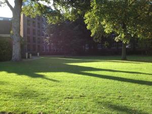 Stadspark Den Bosch