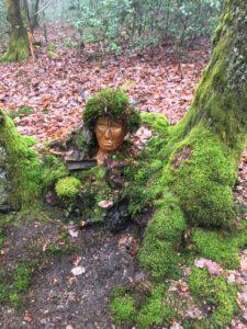 Kop in het bos